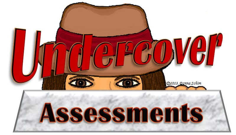 Undercover Restaurant Assessments
