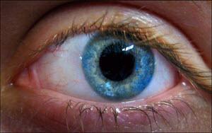 customers eye